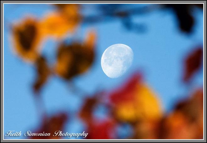 Winter Moon Keith Simonian Photography