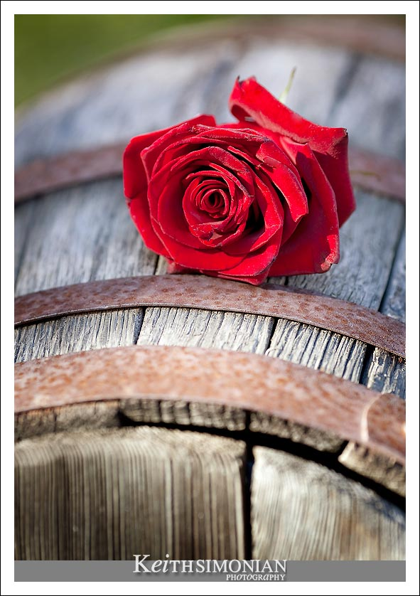 A rose adorns a wine barrel