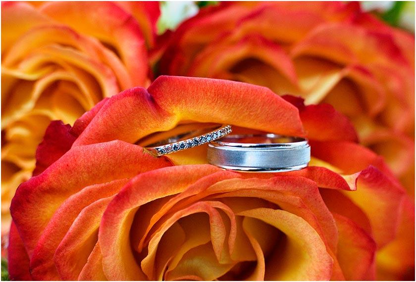 Wedding rings in burnt orange flowers