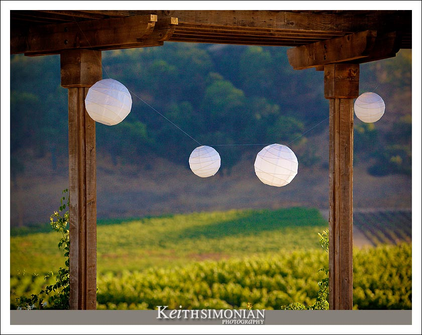 Vineyard back drop for the wedding ceremony at Clos LaChance Winery in San Martin, CA