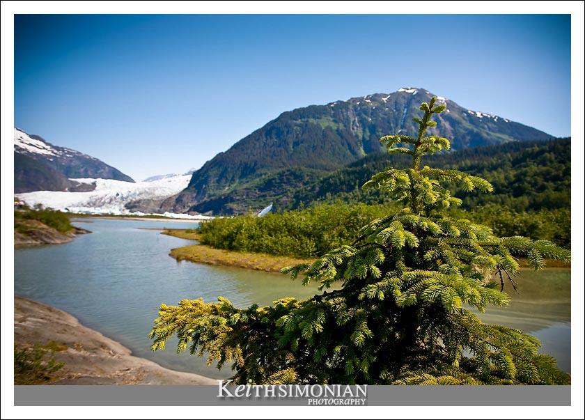 The Mendenhall glacier - Juneau Alaska