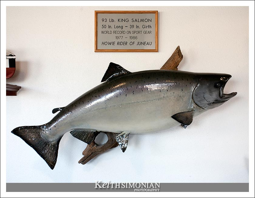 93 pound world record King Salmon caught by Howie Rider
