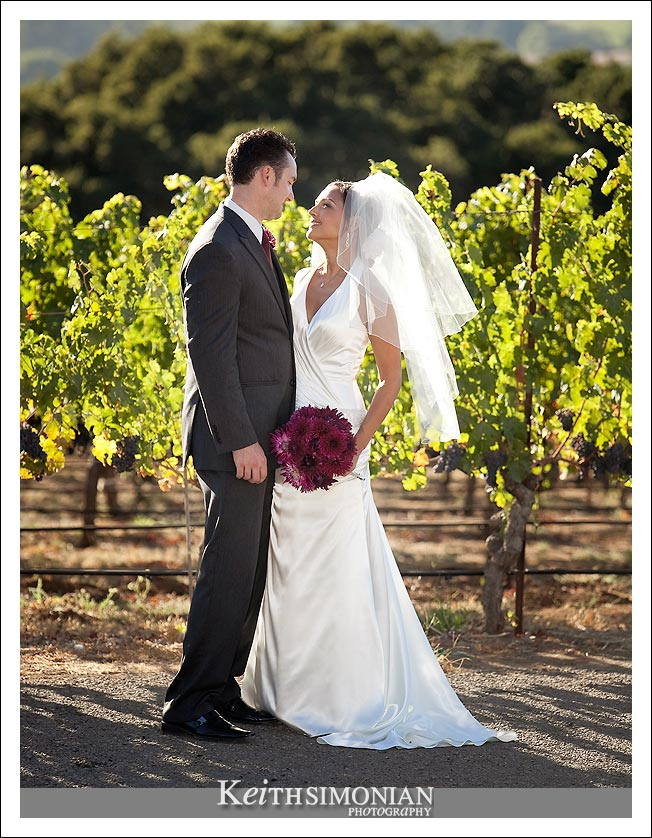 World famous napa valley vineyards are the background the for the bride and grooms portrait