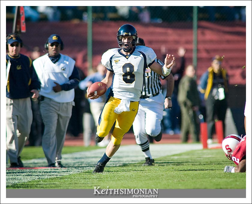 Aaron Rodgers of the California Golden Bears scrambles down the sideline against Stanford in the Big Game - 2003 Palo Alto, CA