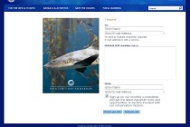 This photo of a leopard shark was used by the Monterey Bay Aquarium for one of their e-cards