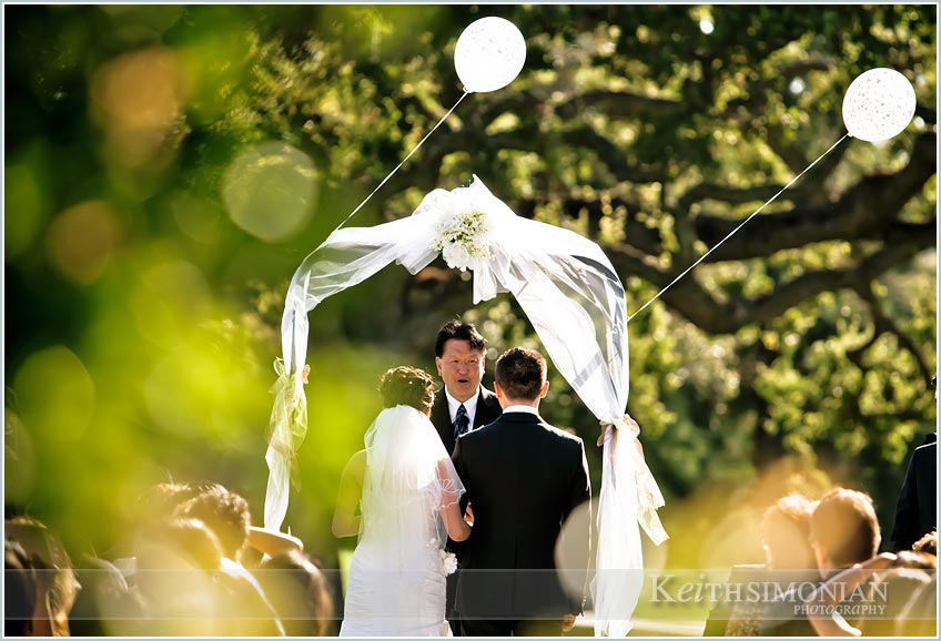 bride, groom guests and ballons