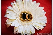 Wedding rings on white flower photo
