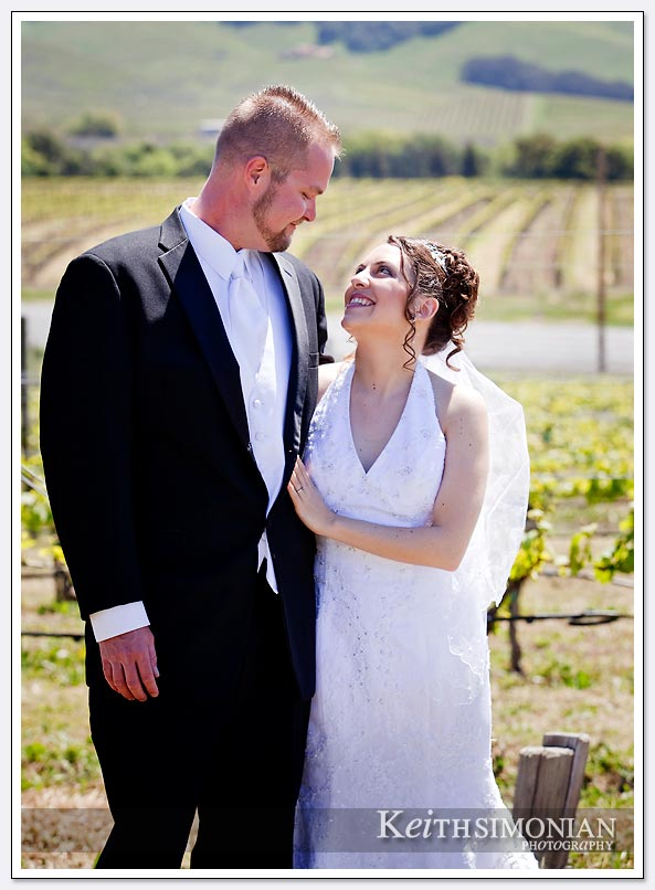 Napa valley wedding photo in vineyards