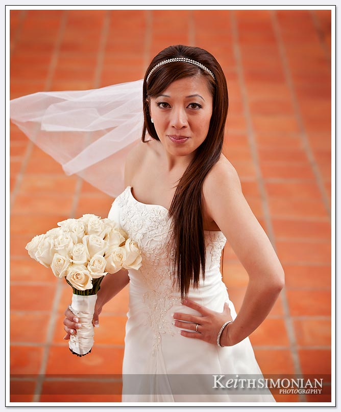 Just married bride poses for bridal portrait