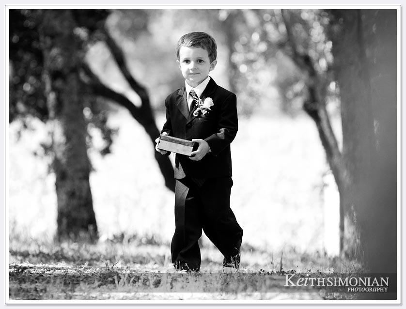 Napa Valley wedding at BR Cohn Winery with ring bearer walking into wedding ceremony