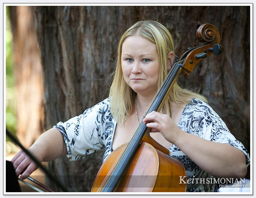 Music and tall redwood trees greet wedding ceremony guests at Pema Osel Ling