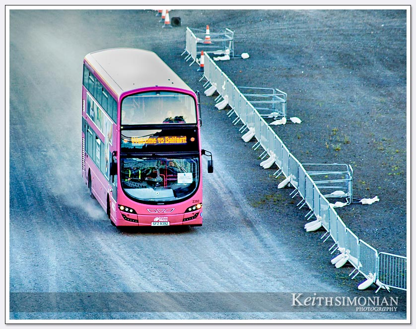 One of the pink buses that took the Princess Line ship's passengers into The Lanyon Building of Queen's University