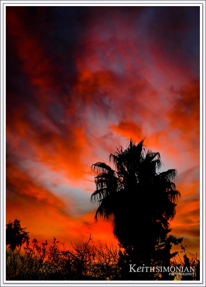 Blazing Red March sky over Brentwood, California