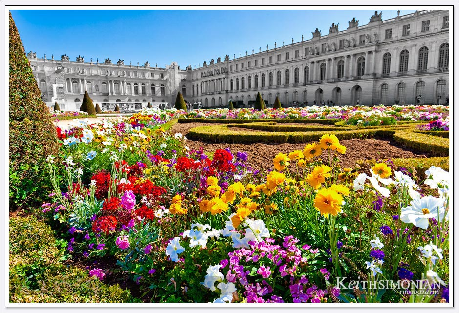 Flowers in the Garden of Versailles behind the Palace of Versailles just 8 miles from Paris
